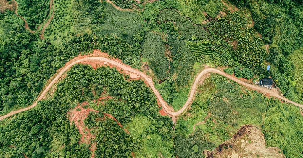 chemin, forêt, terre, arbres, montagne